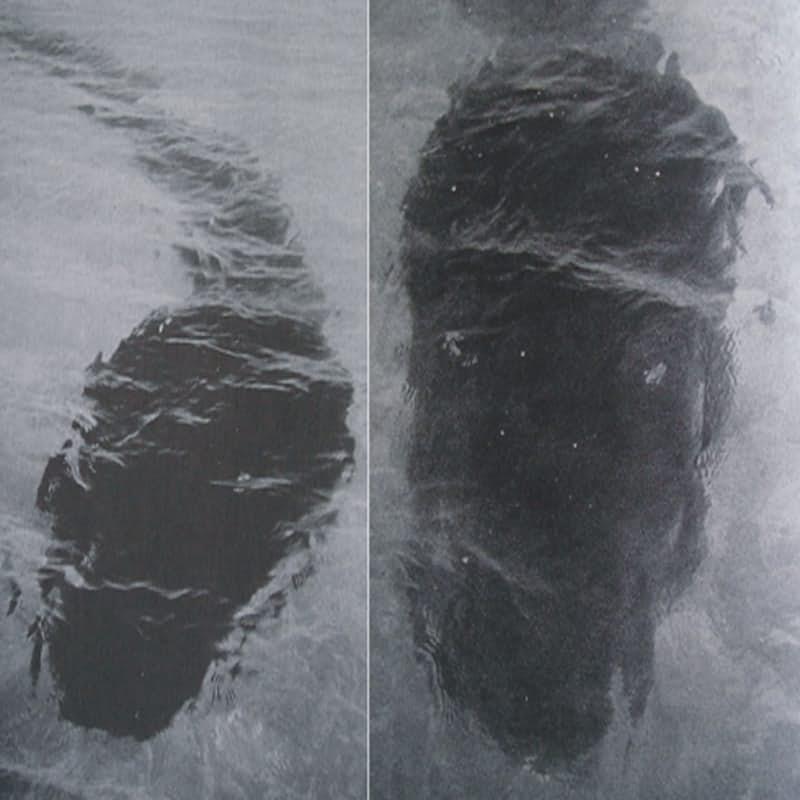 10 bức ảnh bí ẩn không có lời giải đáp của thế kỷ - Ảnh 3.