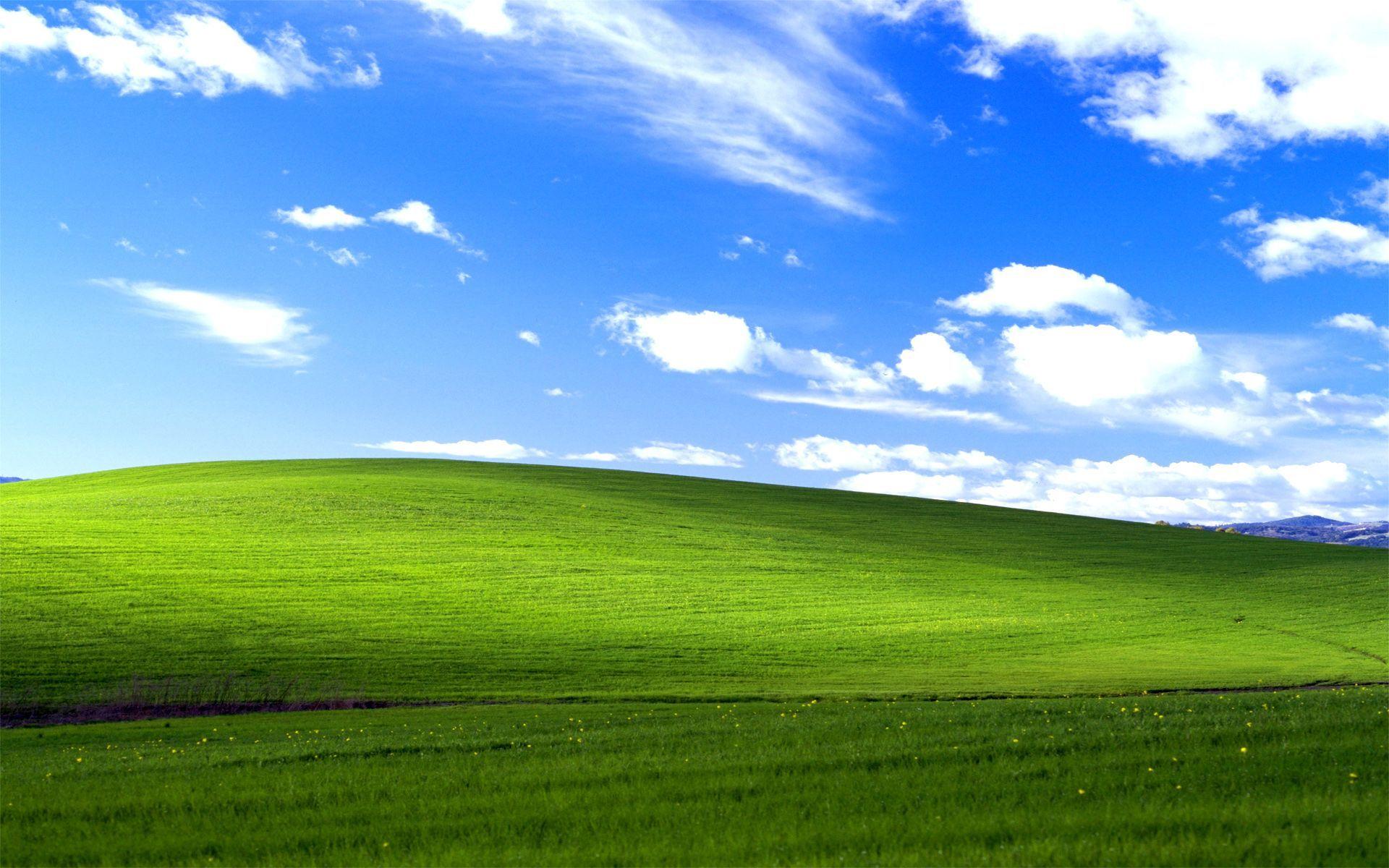 Hình nền này có tên gọi Bliss. Sở dĩ Bliss nổi tiếng và được nhiều người biết đến nhất bởi nó là hình nền mặc định trong Windows XP.