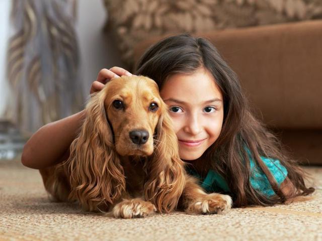 Nghiên cứu quy mô 3 triệu người đã xác nhận một lợi ích tuyệt vời khi nuôi một con chó - Ảnh 2.
