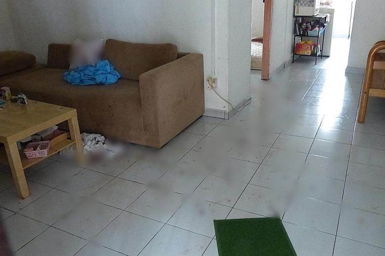 Phát hiện thi thể đẫm máu của một phụ nữ Việt trong căn hộ chung cư ở Singapore - Ảnh 2.