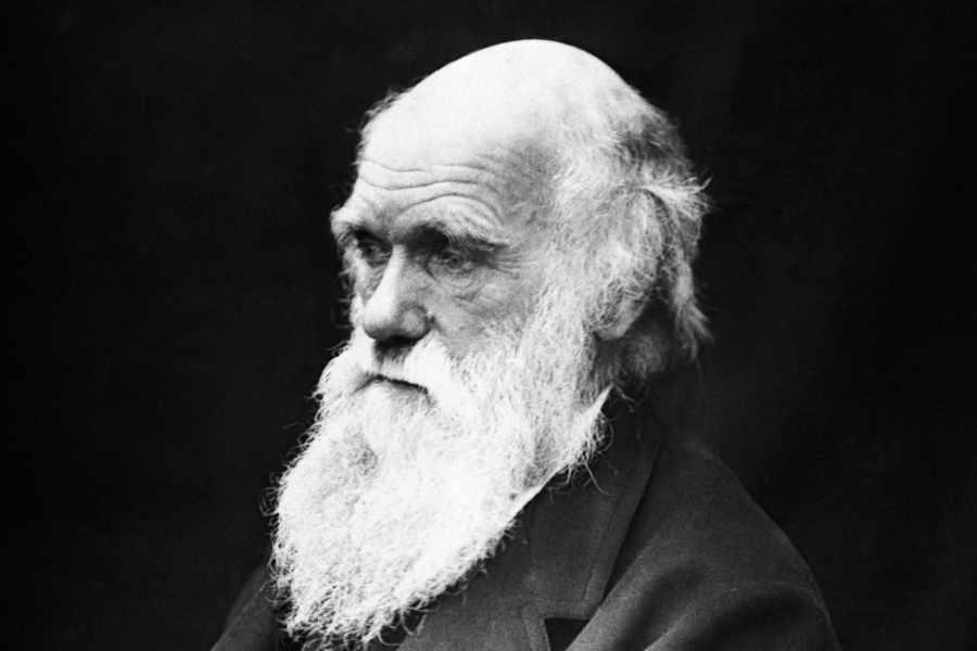 Charles Darwin - một nhà khoa học đại tài, một người cha vĩ đại trong lịch sử nhân loại - Ảnh 1.
