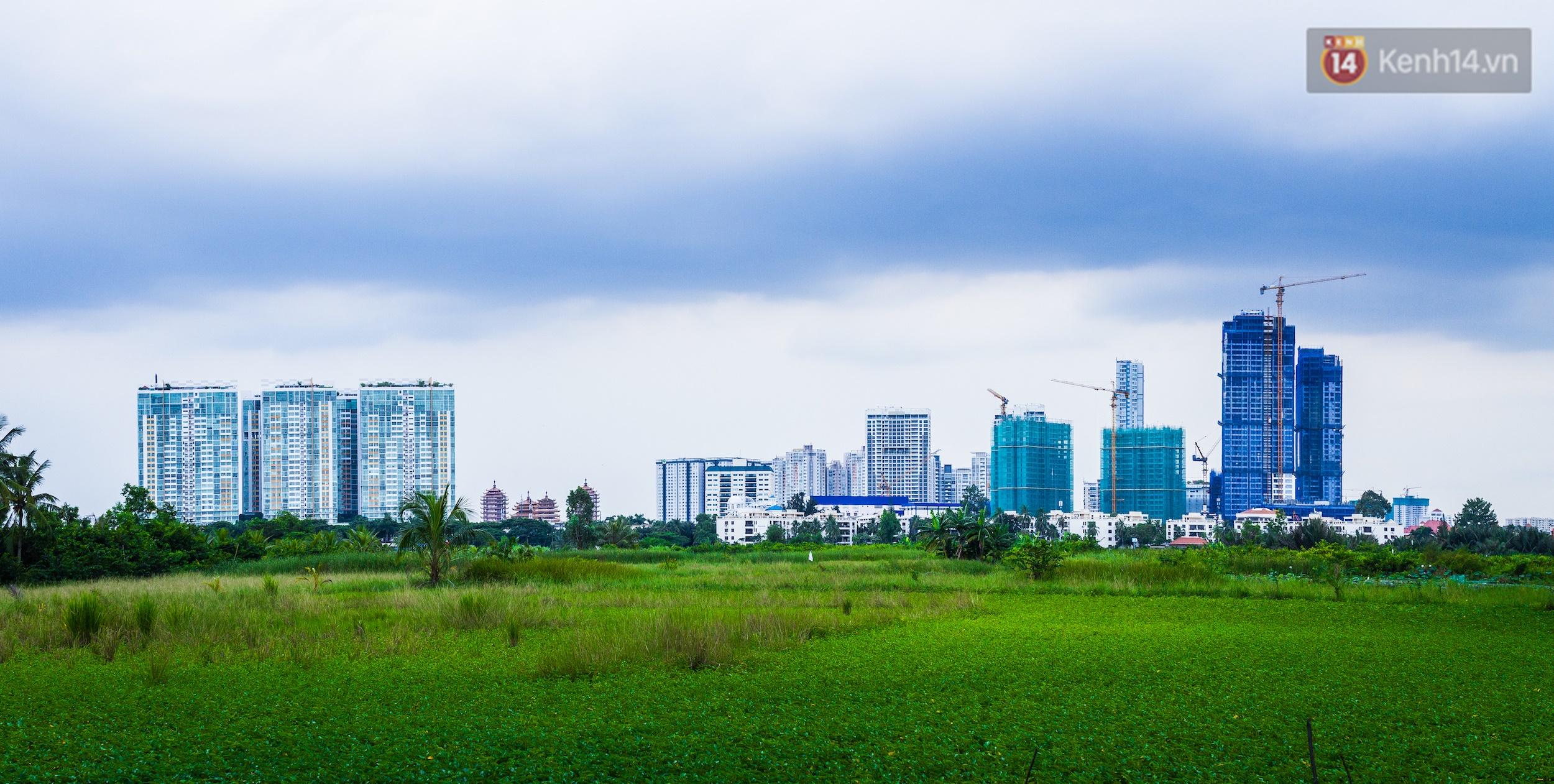Chùm ảnh: Cuộc sống ở bán đảo Thanh Đa - Một miền nông thôn tách biệt dù chỉ cách trung tâm Sài Gòn vài km - Ảnh 4.