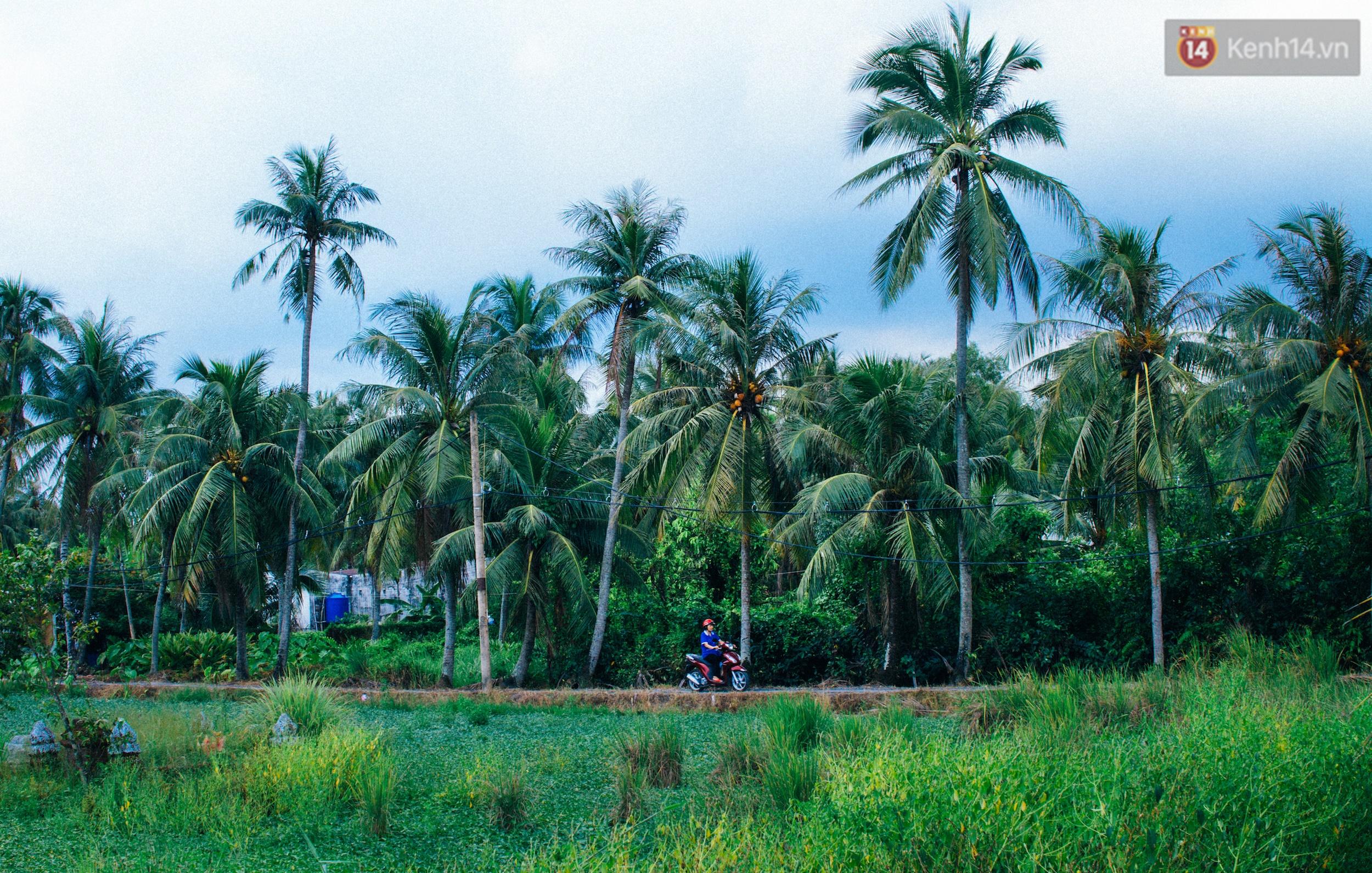 Chùm ảnh: Cuộc sống ở bán đảo Thanh Đa - Một miền nông thôn tách biệt dù chỉ cách trung tâm Sài Gòn vài km - Ảnh 16.