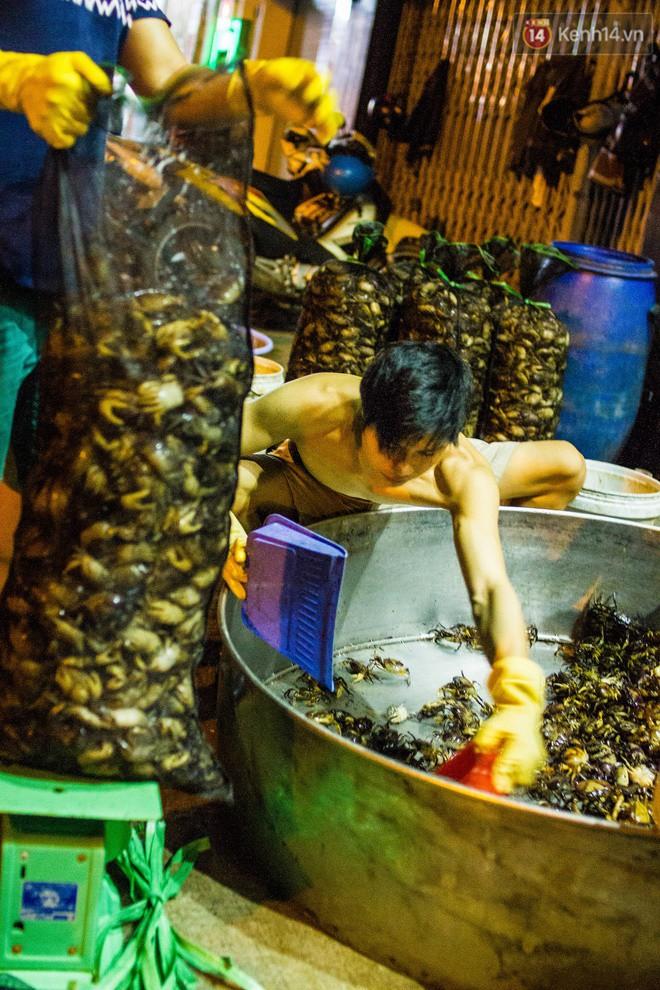 Chợ cua đặc biệt ở Sài Gòn: Suốt 50 năm chỉ tụ họp buôn bán lúc nửa đêm - Ảnh 7.