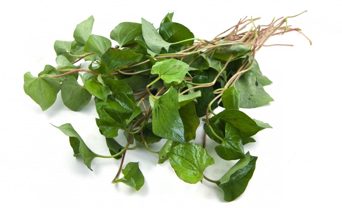 Nếu có thói quen ăn 6 loại rau thơm này, cơ thể bạn đang được hưởng rất nhiều lợi ích - Ảnh 6.