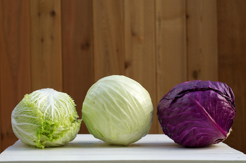 Phòng chống ung thư hiệu quả với 6 loại thực phẩm chợ nào cũng bán - Ảnh 6.