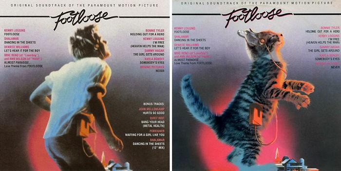 Thay đám mèo cute vào hình ca sĩ trên bìa album, cuối cùng hiệu ứng từ chúng còn hiệu quả hơn bản gốc - Ảnh 11.
