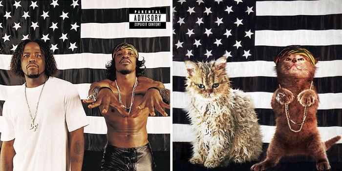 Thay đám mèo cute vào hình ca sĩ trên bìa album, cuối cùng hiệu ứng từ chúng còn hiệu quả hơn bản gốc - Ảnh 15.