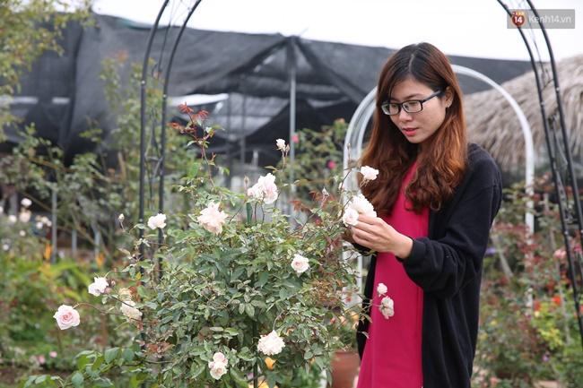 Cô gái trẻ sở hữu khu vườn 5.000m2 với hàng nghìn hoa hồng quý hiếm, đắt đỏ tại Hà Nội - Ảnh 1.