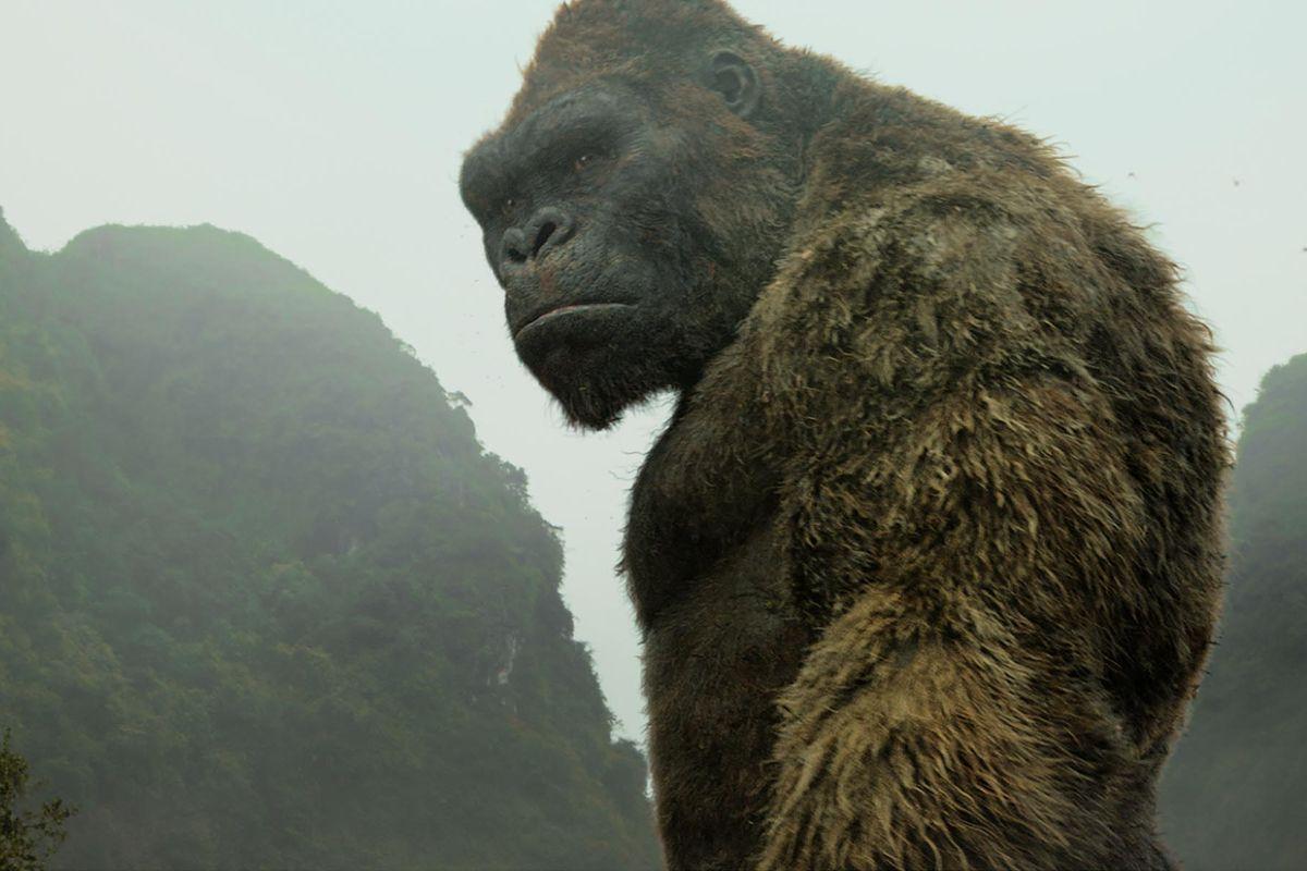 Vua Kong của đảo Đầu Lâu, sao cứ ôm hoài một mối tình si với mỹ nhân loài người? - Ảnh 15.