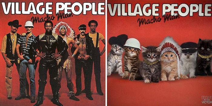 Thay đám mèo cute vào hình ca sĩ trên bìa album, cuối cùng hiệu ứng từ chúng còn hiệu quả hơn bản gốc - Ảnh 17.