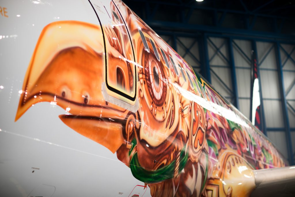 Tomorrowland 2017 cháy vé sau 5 tiếng mở bán, chịu chơi với máy bay thiết kế riêng - Ảnh 6.