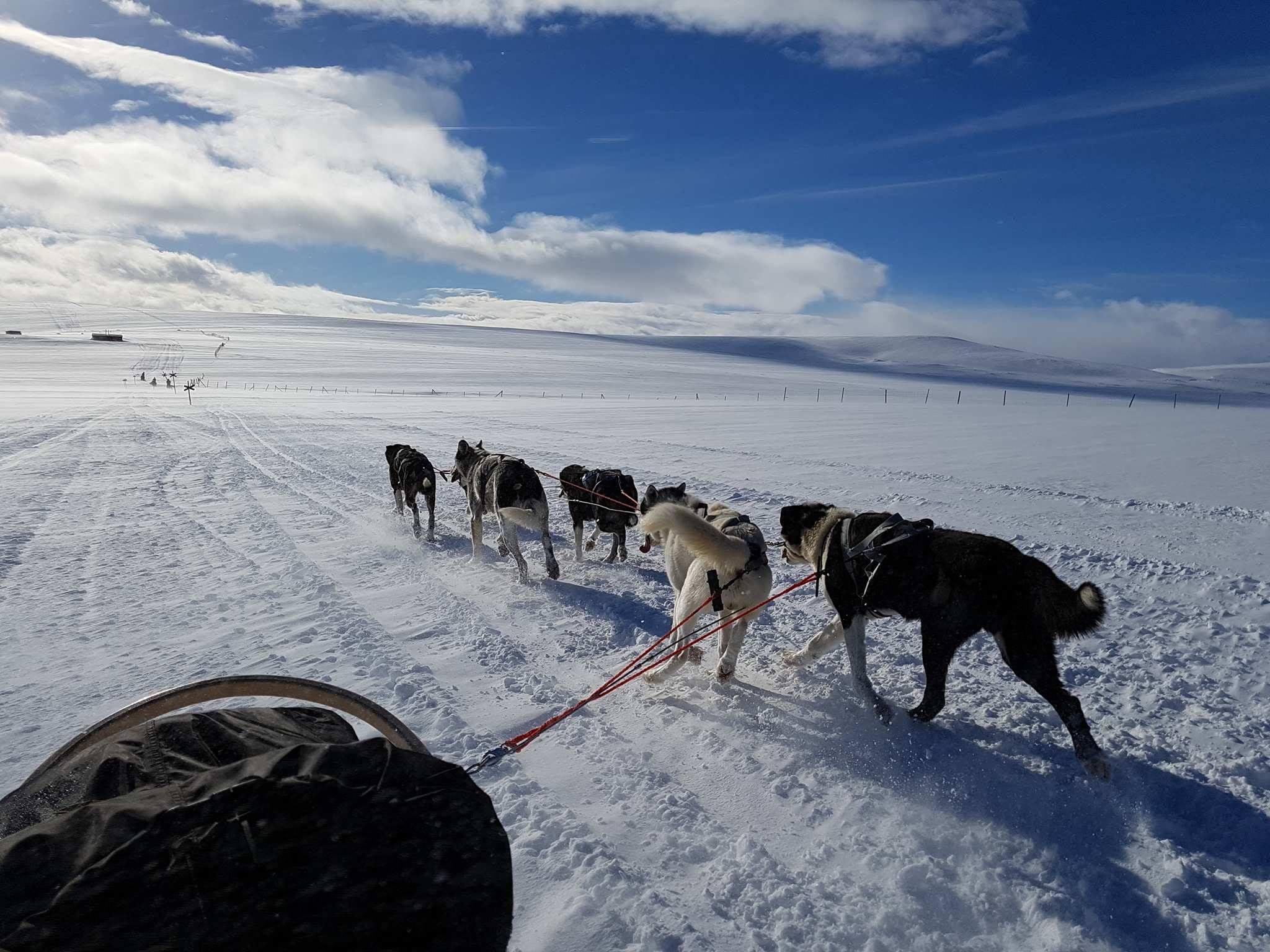 Chàng trai từng kêu gọi cộng đồng mạng vote cho mình đã hoàn thành thử thách chinh phục Bắc Cực! - Ảnh 8.