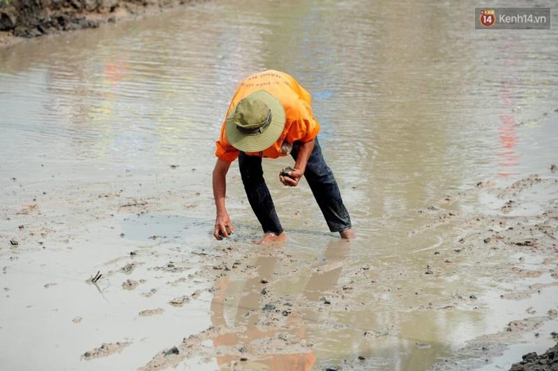 Chùm ảnh: Những pha té ngã không thương tiếc trên đường đua bò vùng Bảy Núi - Ảnh 9.