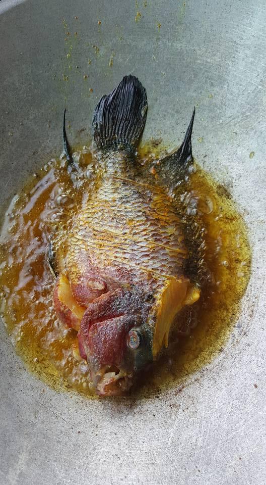 Chàng trai chơi trội rán cá La Hán hàng chục triệu đồng thưởng thức cho sang mồm - Ảnh 4.