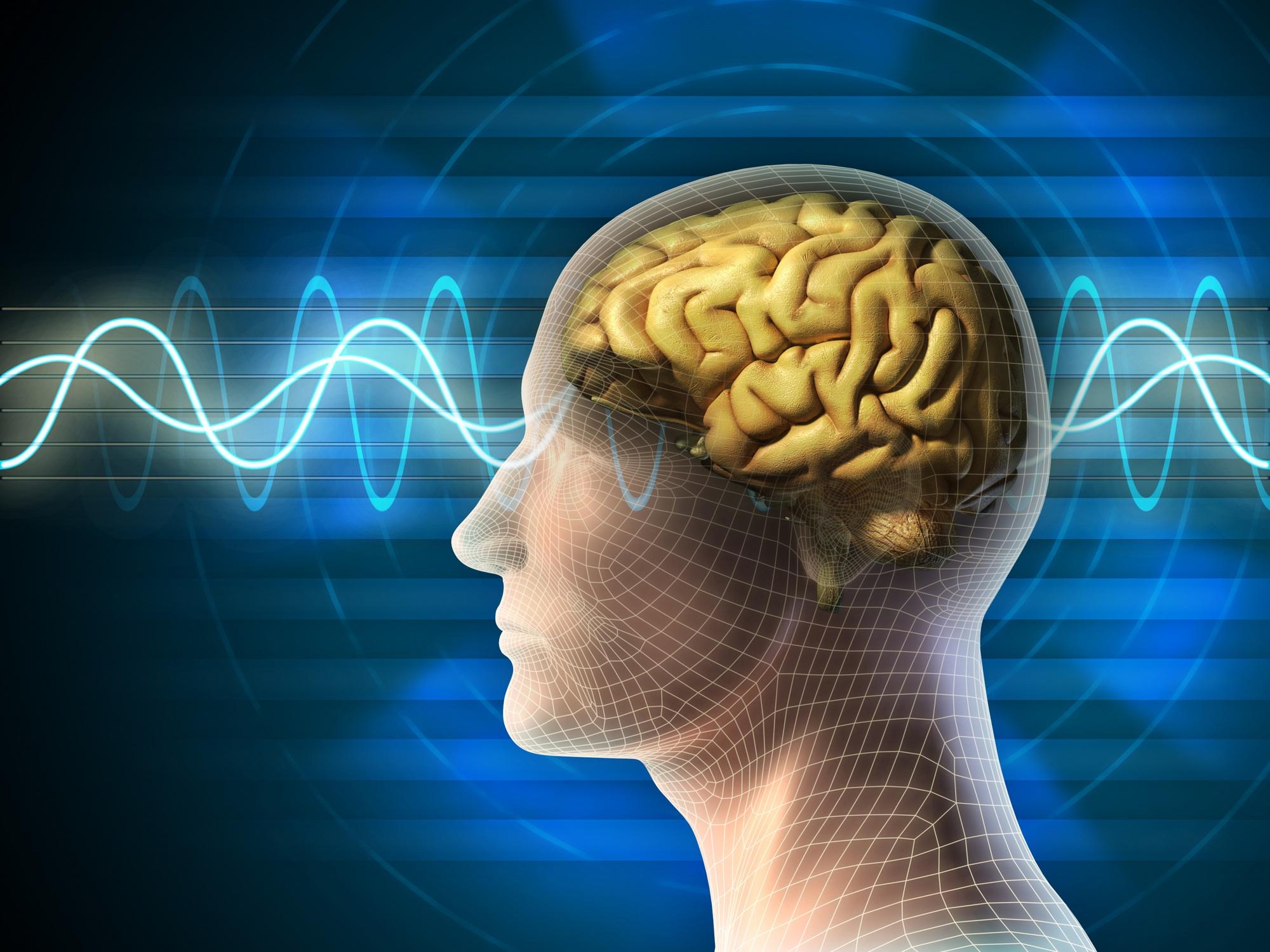 Muốn bộ não ngày càng thông minh thì không nên bỏ qua 5 thói quen này - Ảnh 2.