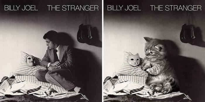 Thay đám mèo cute vào hình ca sĩ trên bìa album, cuối cùng hiệu ứng từ chúng còn hiệu quả hơn bản gốc - Ảnh 21.