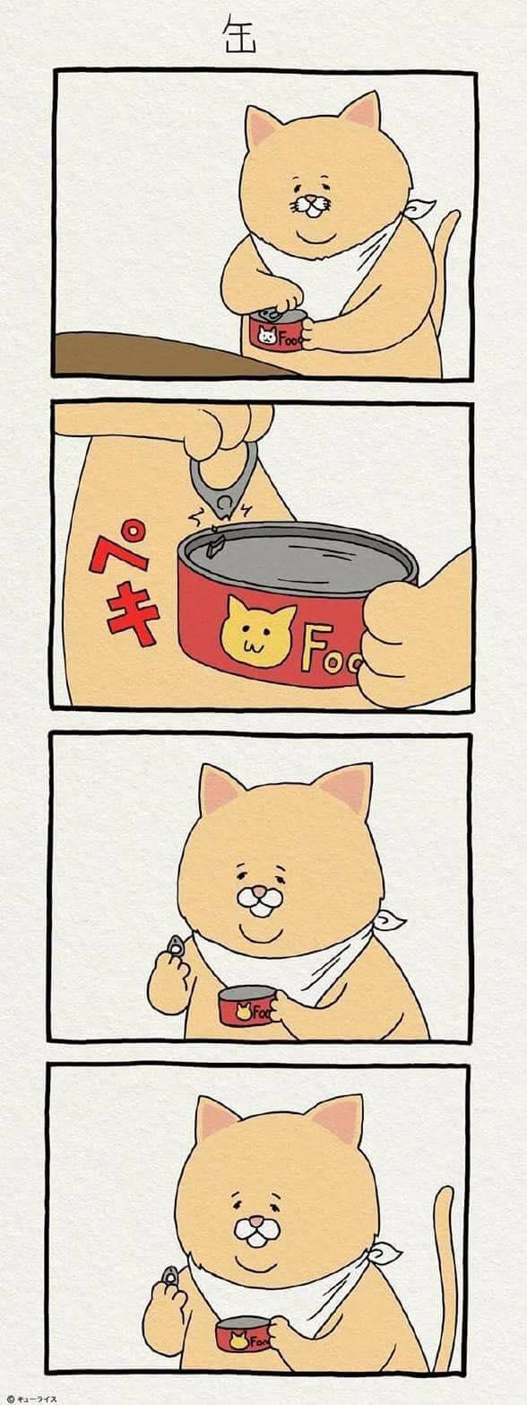 Khi mèo ăn uống như con người và cũng gặp tai nạn dở khóc dở cười chẳng kém ai! - Ảnh 3.