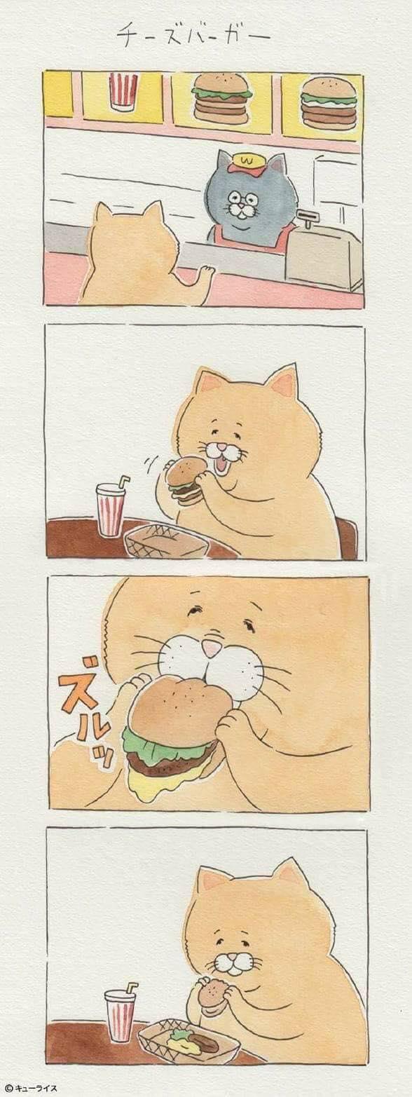 Khi mèo ăn uống như con người và cũng gặp tai nạn dở khóc dở cười chẳng kém ai! - Ảnh 15.