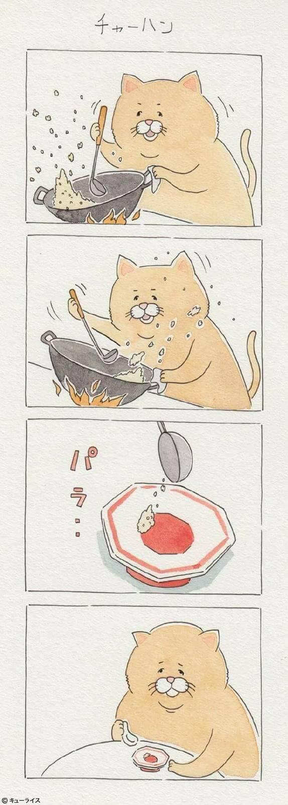 Khi mèo ăn uống như con người và cũng gặp tai nạn dở khóc dở cười chẳng kém ai! - Ảnh 17.