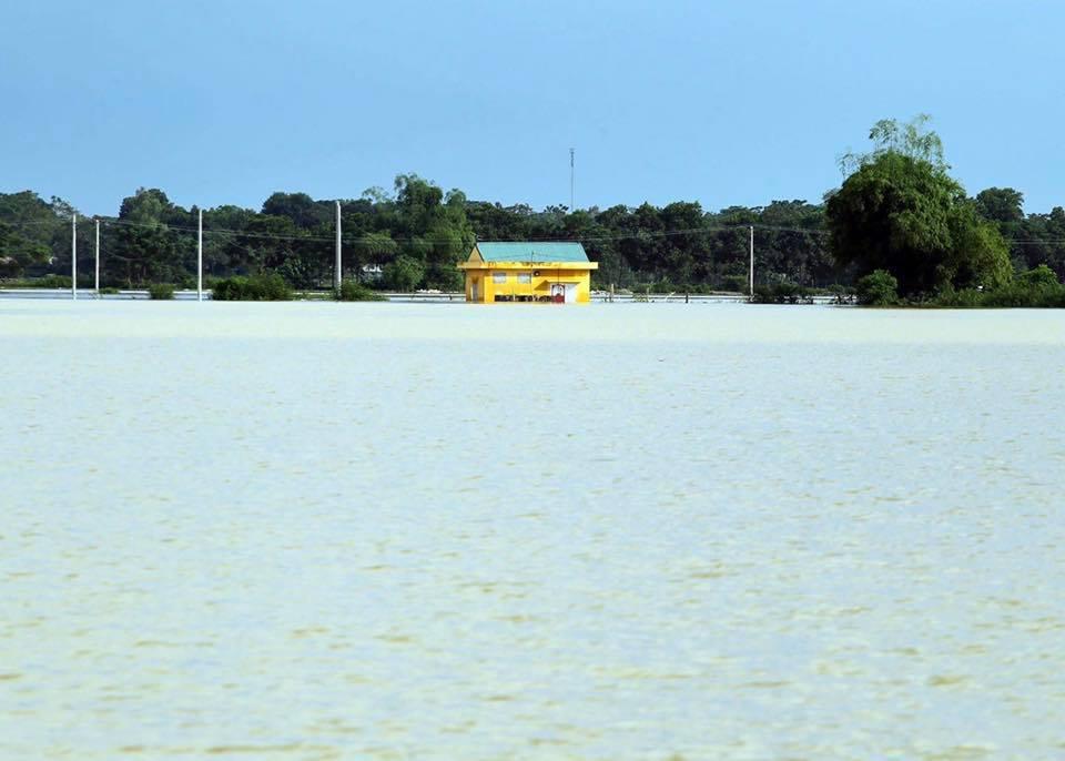 Hà Nội bác tin vỡ đê sông Bùi, một số vị trí chỉ do sạt lở, sụt lún nên bị tràn nước - Ảnh 3.