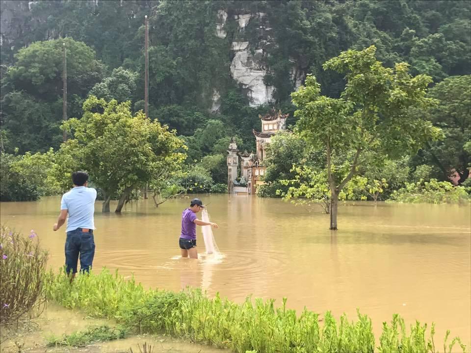 Chùm ảnh: Ninh Bình nhiều nơi nước ngập quá 2m, đường vào khu du lịch Bái Đính bị cô lập - Ảnh 9.