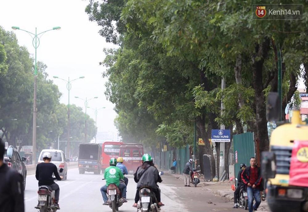 Hà Nội chặt, di dời hơn 1.000 cây ở đường Phạm Văn Đồng - Ảnh 6.