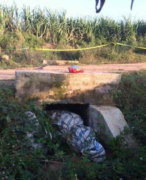 Đắk Lắk: Người phụ nữ bị sát hại dã man, thi thể bị bó trong bạt vứt xuống cống nước - Ảnh 1.