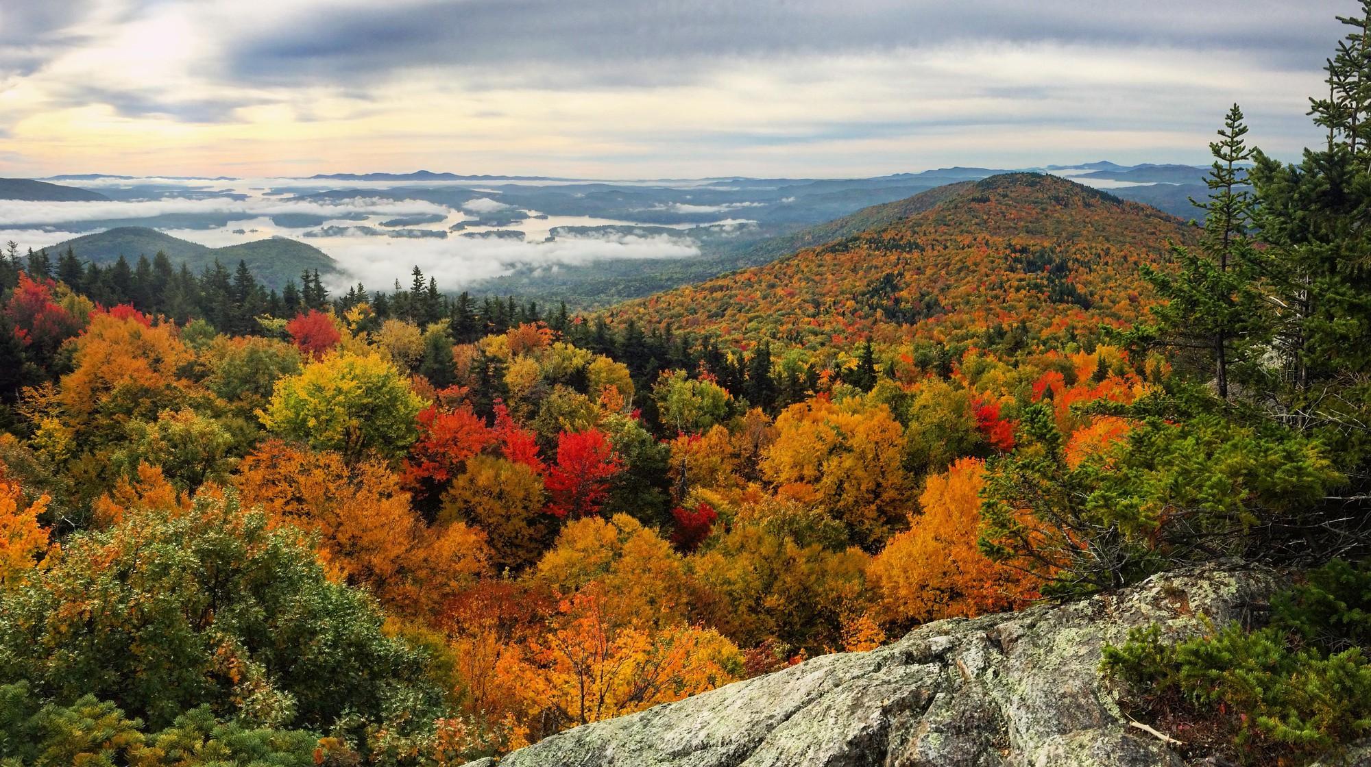 Ngắm phong cảnh đẹp đến ngoạn mục của những khu rừng vào mùa thu - Ảnh 5.