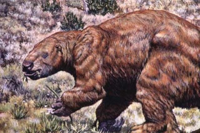 Cái hang sâu hun hút này được đào bởi những sinh vật khổng lồ thời cổ đại - Ảnh 2.