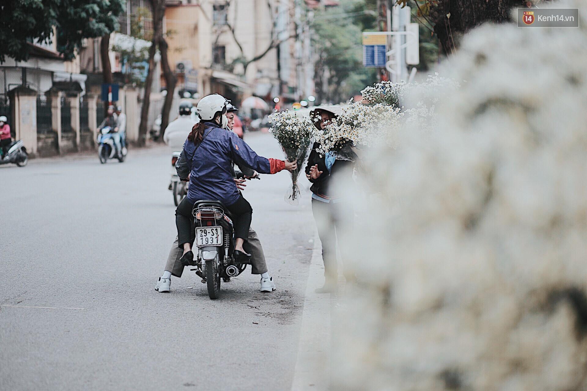 Đông về Hà Nội có mong gì đâu, chỉ chờ một mùa cúc họa mi trên phố - Ảnh 8.