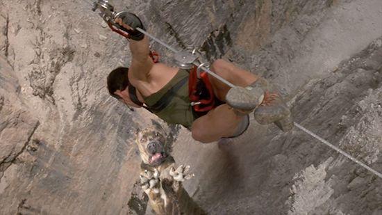 Loạt ảnh chế chú chó sợ hãi khiến bạn xem xong cũng phải buồn cười - Ảnh 5.