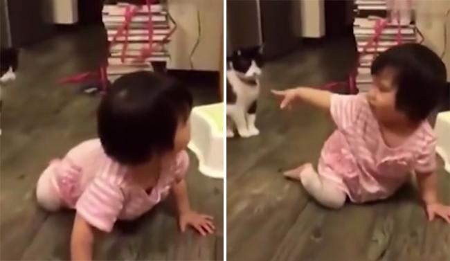 Chú mèo xấu tính thò chân ra ngáng khiến bé gái ngã sấp mặt - Ảnh 3.