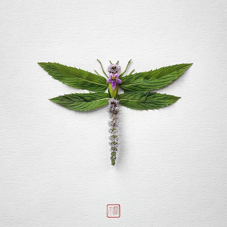 Khoác lên mình lớp áo hoa cỏ rực rỡ, côn trùng bỗng trở nên đẹp và sang hơn bao giờ hết - Ảnh 2.