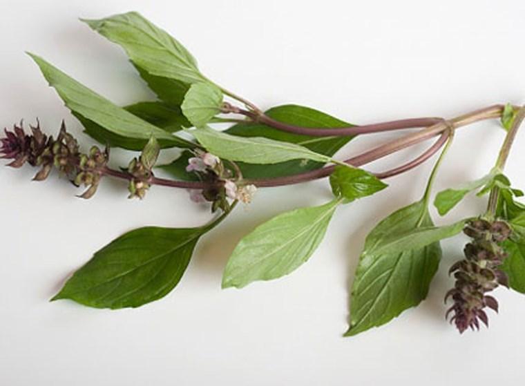 Nếu có thói quen ăn 6 loại rau thơm này, cơ thể bạn đang được hưởng rất nhiều lợi ích - Ảnh 2.