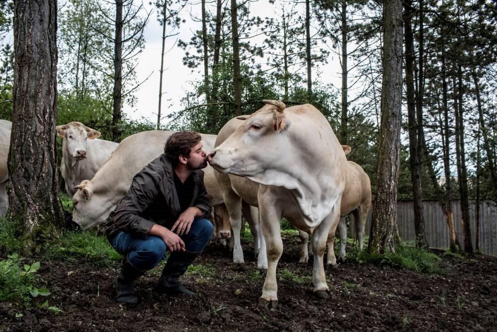 Món thịt bò ngủ đông đắt nhất thế giới, muốn ăn phải đặt trước cả năm trời - Ảnh 3.