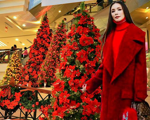 Giáng sinh chưa đến mà Hồ Quỳnh Hương đã cosplay bà già Noel ngay rồi? - Ảnh 4.