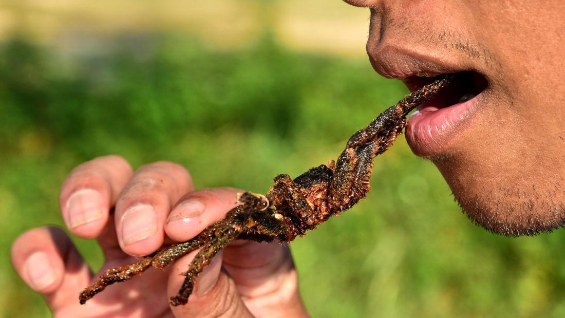 Ẩm thực lạ ở Campuchia: Món nhện độc ai nhìn cũng khiếp vía nhưng vẫn ùn ùn người ăn - Ảnh 1.