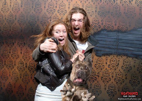 Loạt ảnh chế chú chó sợ hãi khiến bạn xem xong cũng phải buồn cười - Ảnh 11.