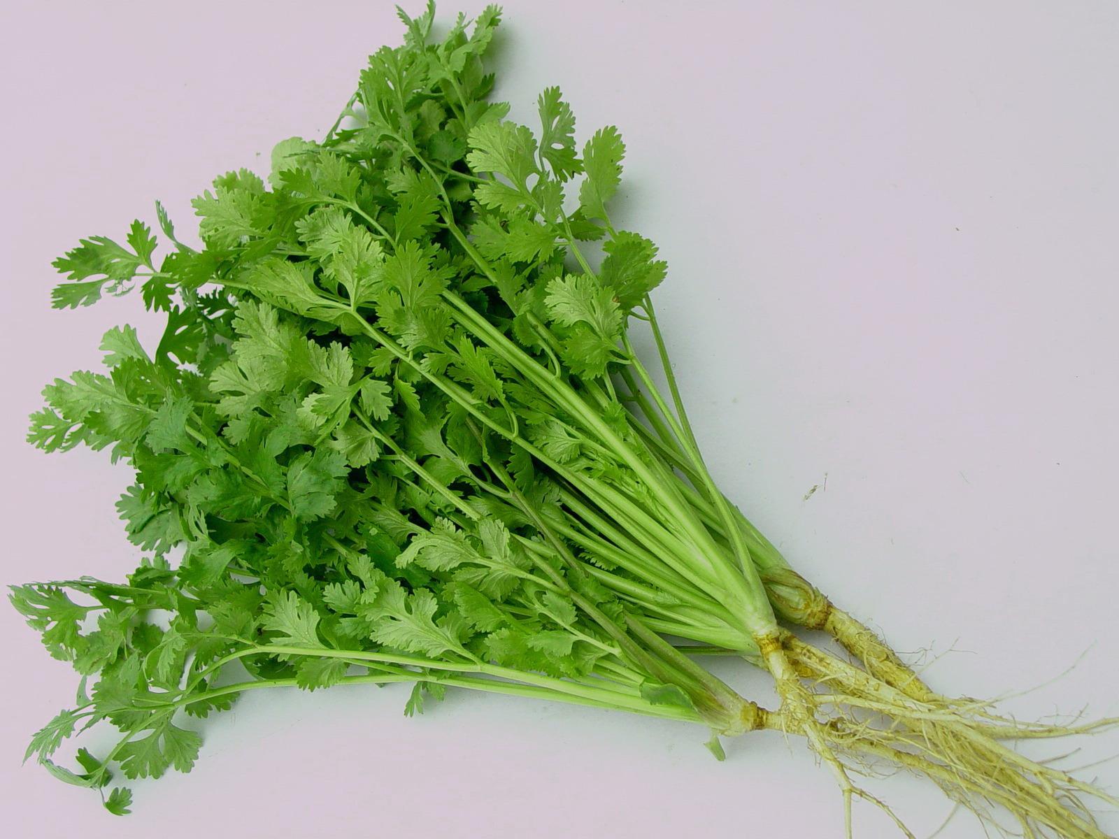 Nếu có thói quen ăn 6 loại rau thơm này, cơ thể bạn đang được hưởng rất nhiều lợi ích - Ảnh 3.