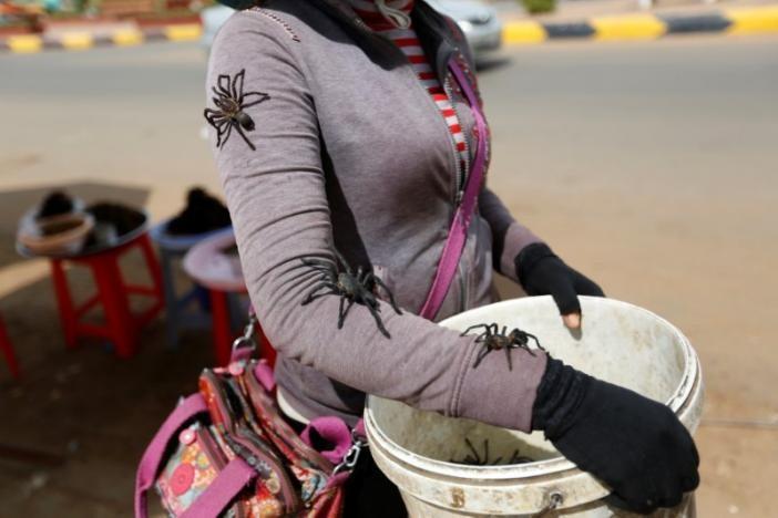 Ẩm thực lạ ở Campuchia: Món nhện độc ai nhìn cũng khiếp vía nhưng vẫn ùn ùn người ăn - Ảnh 4.