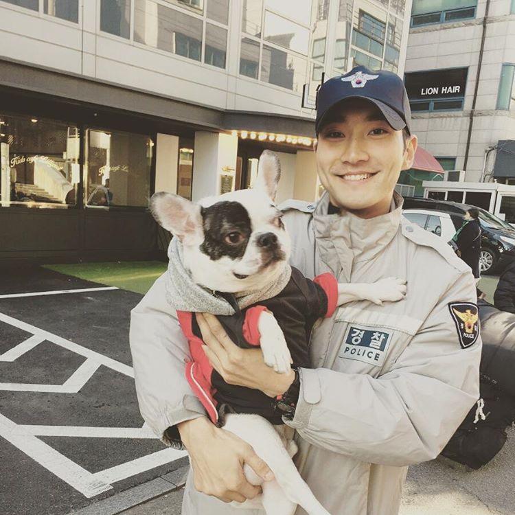Chú Bull Pháp của Choi Siwon nuôi là giống chó như thế nào? - Ảnh 1.
