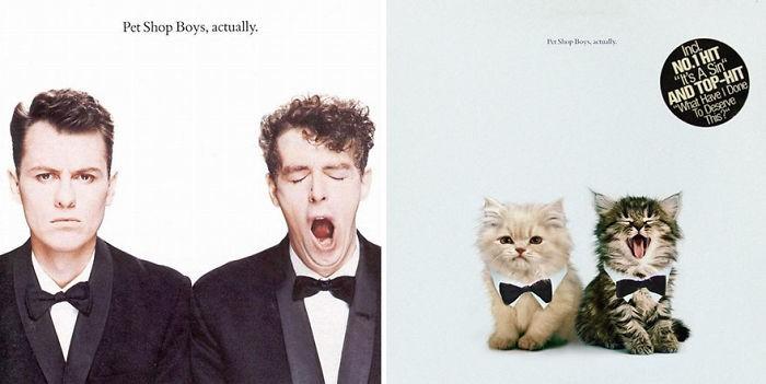 Thay đám mèo cute vào hình ca sĩ trên bìa album, cuối cùng hiệu ứng từ chúng còn hiệu quả hơn bản gốc - Ảnh 29.