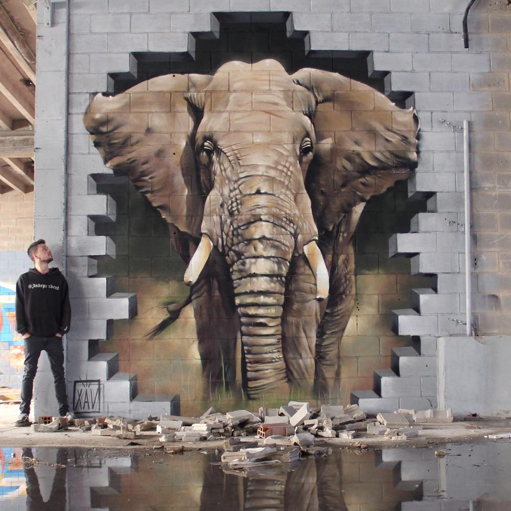 Ngắm nhìn 17 bức tranh tường 3D chân thực khắp nơi trên thế giới - Ảnh 17.