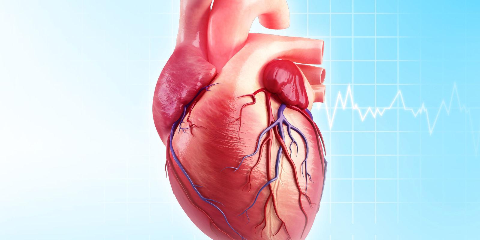 Ngăn ngừa đau tim và đột quỵ với 3 loại thực phẩm dễ tìm vừa được các nhà nghiên cứu công bố - Ảnh 1.