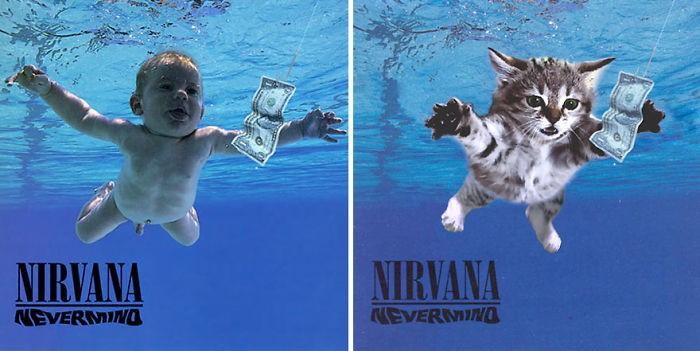 Thay đám mèo cute vào hình ca sĩ trên bìa album, cuối cùng hiệu ứng từ chúng còn hiệu quả hơn bản gốc - Ảnh 31.