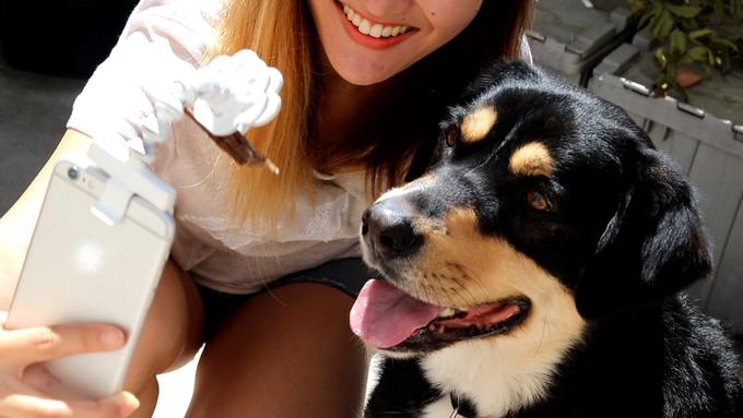 Hút cả trăm nghìn like trên mạng xã hội nhờ những bức ảnh siêu deep của thú cưng - Ảnh 5.