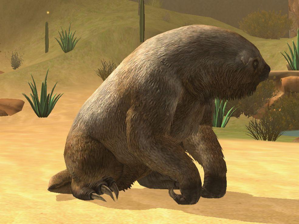 8 sự thật giúp bạn nhận ra con lười là sinh vật thú vị nhất quả đất - Ảnh 8.
