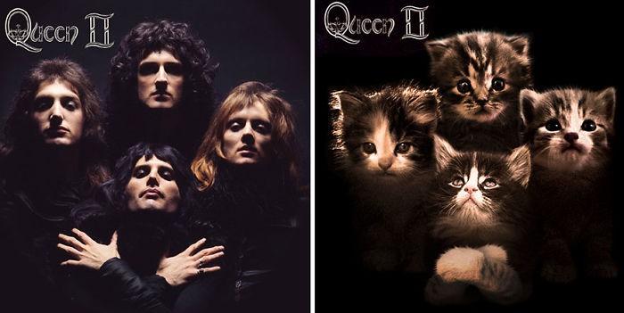 Thay đám mèo cute vào hình ca sĩ trên bìa album, cuối cùng hiệu ứng từ chúng còn hiệu quả hơn bản gốc - Ảnh 33.