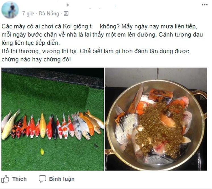 Chàng trai đem cá Koi đắt tiền đi kho tương khiến cộng đồng mạng ngơ ngác - Ảnh 1.